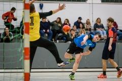 handball_herren_121117SH7_8887