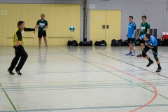 20180121 HSG Werschweiler-WND SSV Wellesweiler (11)