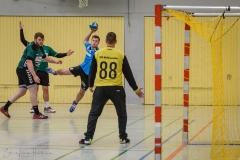 20180121 HSG Werschweiler-WND SSV Wellesweiler (5)